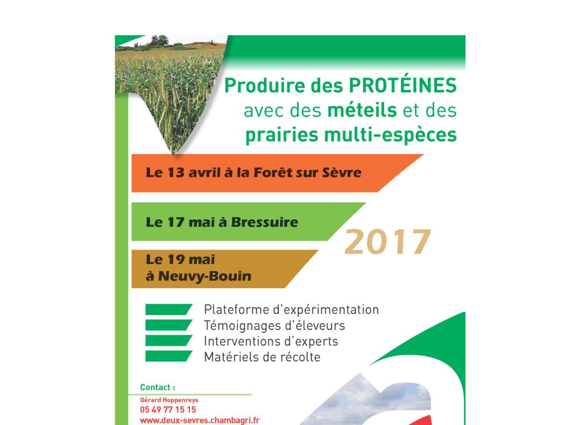 Produire Mes Protéines Avec Des Méteils Et Des Prairies Multi - Chambre d agriculture des deux sevres
