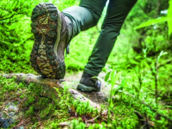 Randonnée : bons réflexes pour belles promenades
