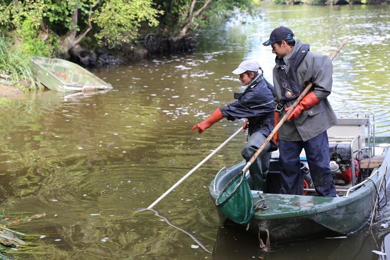 L'Indice poisson rivière (IPR) à
