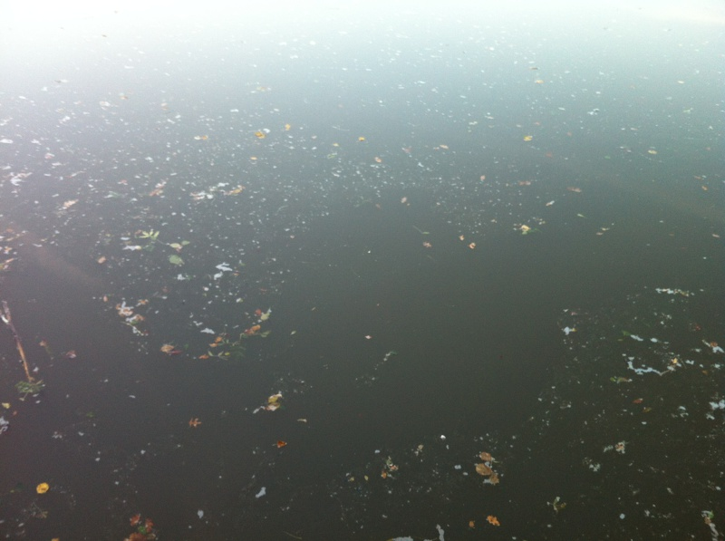 La qualité de l'eau à Montournais